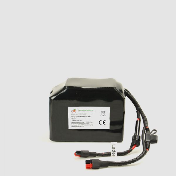 EBS Hi-Power E-Bike Battery 50,4V - based on 2900mAh cells