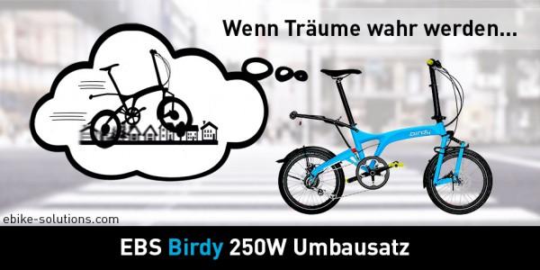 Faltrad-Birdy-nachruesten-Elektromotor_F01