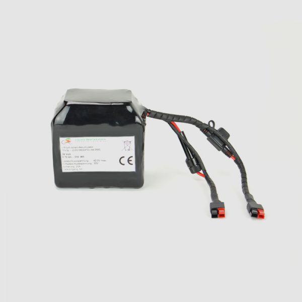 EBS Hi-Power E-Bike Battery 36V - based on 2900mAh cells