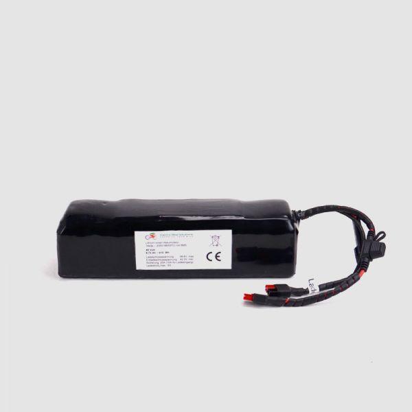 EBS Hi-Power Ebike Akku 50,4V - 3450mAh Zellbasis